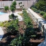 Landscaping Image 30 - Dallas Texas Landscaping Construction