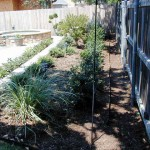 Landscaping Image 37 - Dallas Texas Landscaping Construction