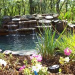Landscaping Image 4 - Dallas Texas Landscaping Construction