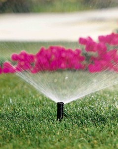 water_conservation_tips